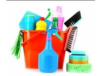 Domestic Cleaner in Reading
