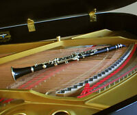 Clarinet, Piano, and Theory Lessons