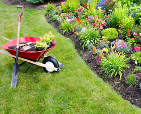 Affordable gardener ideal for small tidy ups and minor landscaping