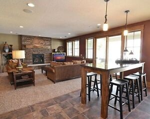 Contemporary Lower Level Walkout