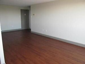 2 bedrooms for the price of 1! PLUS ONE MONTH FREE! Kitchener / Waterloo Kitchener Area image 15