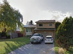 Bradford 4 Lvl Sidesplit 3+1 Bdrm Home - Move In Condition!!