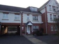 Room to rent in boldmere