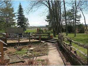 Cozy Modern Country House Rental 1 Acre - Short/Long Term
