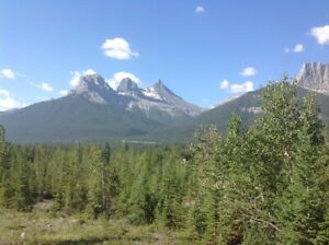 Canmore Move in MAR 31 Furnished 1-BRM $1,150 Excl. Utilities