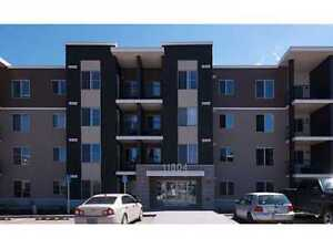 2 BR+Den heated parking and storage room . Pet ok in South.