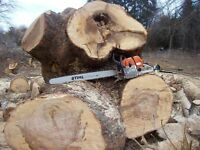 Tree removal, pruning, tree services