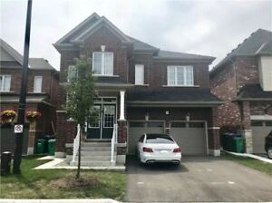 Gorgeous Like Brand New 4 Bdrm Family Home Loaded W/ Upgrades