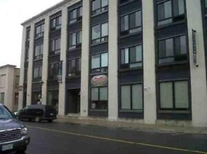 BACHELOR APARTMENT FOR RENT JANUARY 1, 2018 AT THE TIGER LOFTS