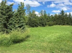 Lot for Sale in town- Elma, MB