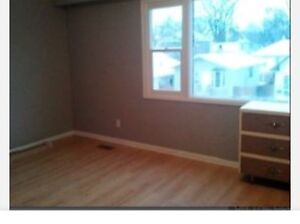 Renovated 3 Bdr at 332 Magnus pets ok water included