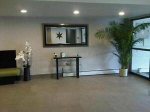 Modern & Newly Renovated 1 Bedroom Suites with Waterfront Views Sarnia Sarnia Area image 3
