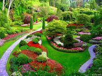 Paul the Gardener
