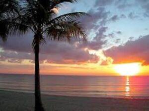 Mois de Décembre sur Ocean Blvd près de la Mer Fort Lauderdale