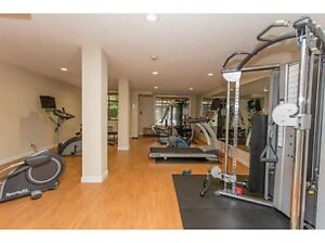 Large Executive Penthouse,area new in Langley Yorkson Creek area