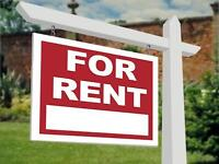 One bedroom for Rent in Bright Basement Shared .
