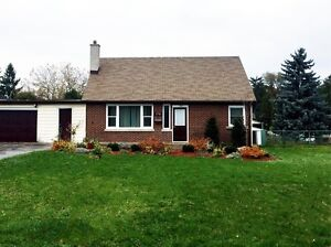 Updated Modern Home with a Fenced Yard!!