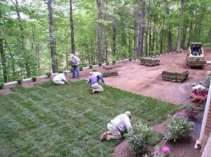 SOD, NEW GRASS STARTING @ $1 PER SQUARE FOOT SOD LAWN CARE FREE