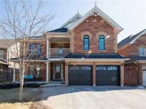 4+1Bed Home, Walk Out Basement, Sale Now!