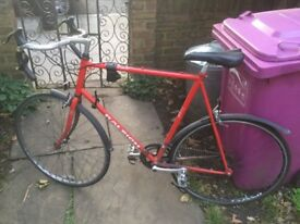 Raleigh bike for sale - £100 or best offer