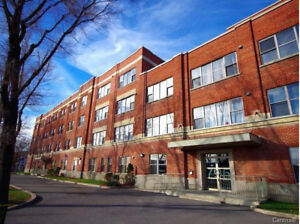 Very nice 3 1/2 loft in Lachine. 560 ft2 and tons of light!
