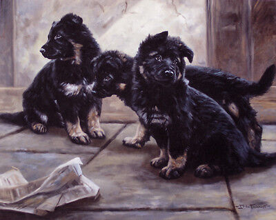 GERMAN SHEPHERD DOG GSD ALSATIAN PUPPIES LIMITED EDITION PRINT  by John Trickett, used for sale  Shipping to Nigeria