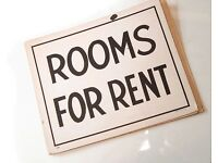 single Room/ Double room rent