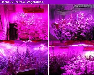 Full spectrum 2800W COB LED Grow Light HPS Killer hydroponic Peterborough Peterborough Area image 3