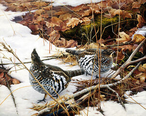 PRICE REDUCED! - Ducks Unlimited Signed and Numbered Print