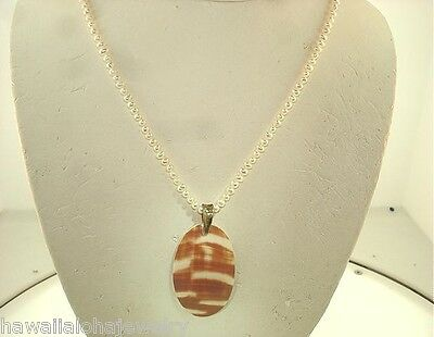 Silver West Pacific Nautilus Shell Graduated Baby Cultured FW Pearl Necklace (Cultured Pearl Gemstone Shell Necklace)