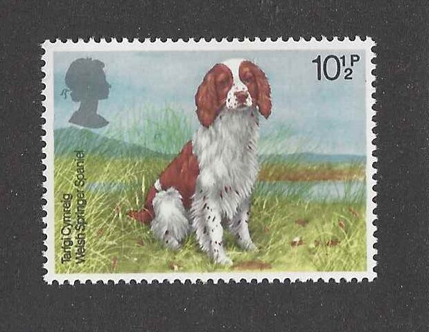 Dog Art Body Portrait Postage Stamp WELSH SPRINGER SPANIEL United Kingdom MNH