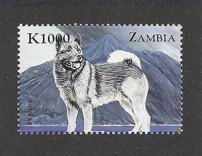 Dog Art Body Study Portrait Postage Stamp NORWEGIAN ELKHOUND Zambia Africa MNH