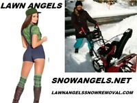 Snow Removal Lawn Angels Pro Grade Landscaping Grass Lawn Garden