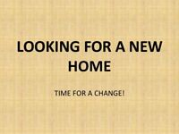 I'm looking for a home in Milton Keynes