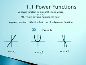 Tutor Calculus Vectors Physics Chemistry Biology Functions