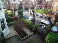 One Bedroom Conversion Flat In Beautiful Tree lined Road In Streatham