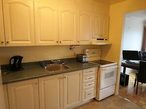 Furnished one Bedroom Condo in Secure building