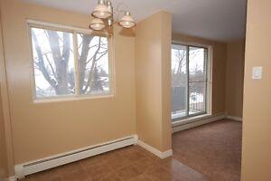 3 Bedroom in Listowel!Easy Commute to K/W,Guelph & Stratford! Kitchener / Waterloo Kitchener Area image 2