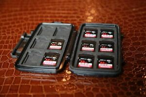 Sandisk 32GB SD cards with Pelican Case