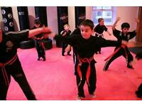 Solo martial arts academy pass for 3yrs plus