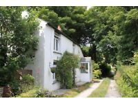Cottage to let, 2 bedrooms in quiet valley, nr Redruth, 5 min drive to sea, 6 mnths only Oct-March
