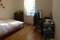 July-August Sublet - One bedroom in a 4 1/2 ($500/mo)