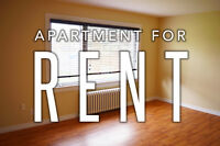VIDEO WALKTHROUGH- 2 BEDROOM - Close to UdeM & NBCC