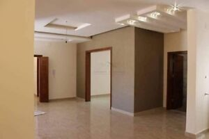 EXPERIENCED PAINTER. LOW PRICES