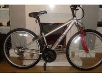 apollo xc.26 mountain bike
