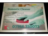 Reliable Domestic Cleaners
