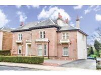 2 bedroom ground floor flat for rent Auchingramont Road Hamilton
