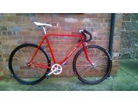 Custom Fixed Gear Fixie Road Bike Mens Saracen 80's Retro Vintage Bicycle Bike