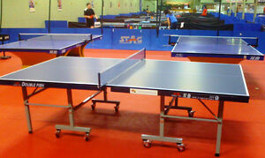 Double Fish Tournament Grade Ping Pong Table 18mm Top