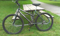 Adult Mountain Bike - Perfect for Student Use